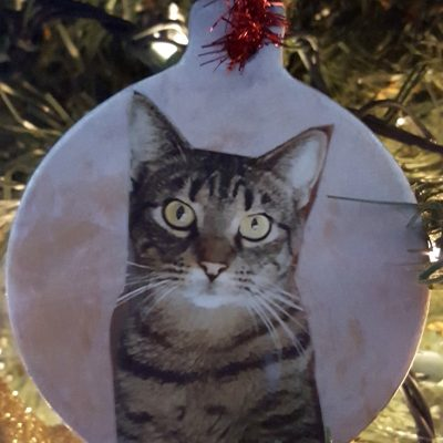 Pet Photo Christmas Ornaments